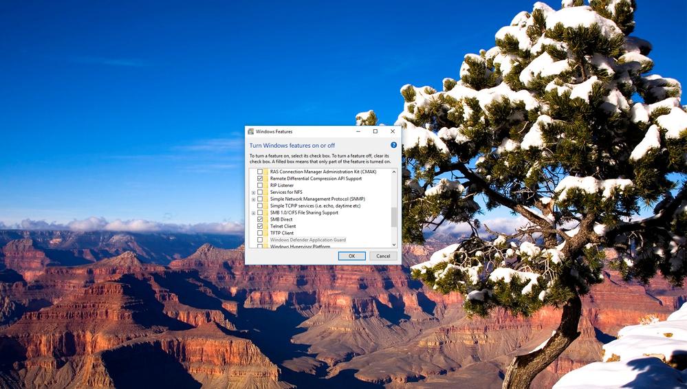 Window Telnet.png